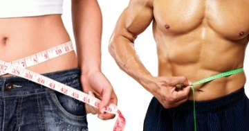 body composition and metabolism
